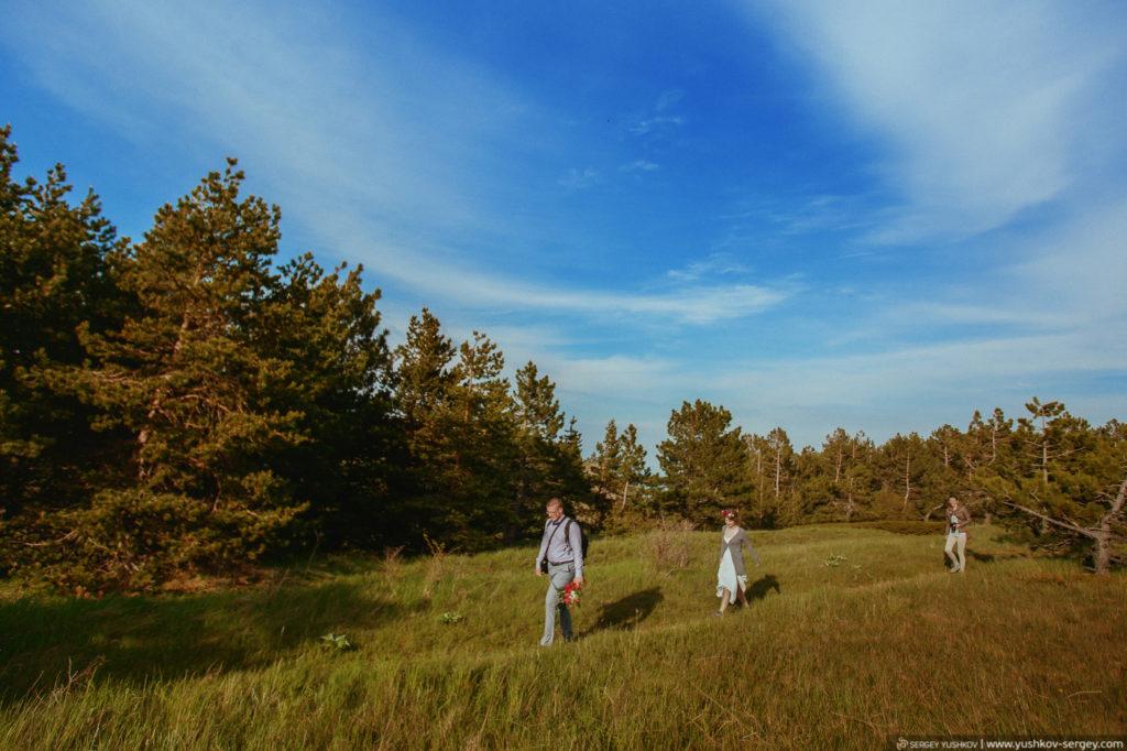 Wedding, family photographer in the Crimea, Sevastopol, Moscow - Sergei YUSHKOV