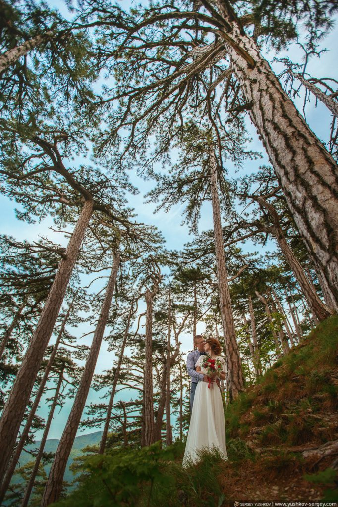 Wedding for two in the Crimea. Photoshoot on Mount Ai-Petri. Wedding and family photographer in Crimea - Sergey YUSHKOV