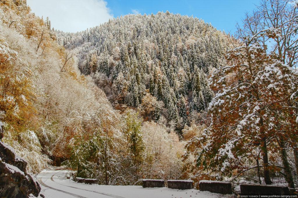 Дорога на озеро Рица. Осень. Абхазия