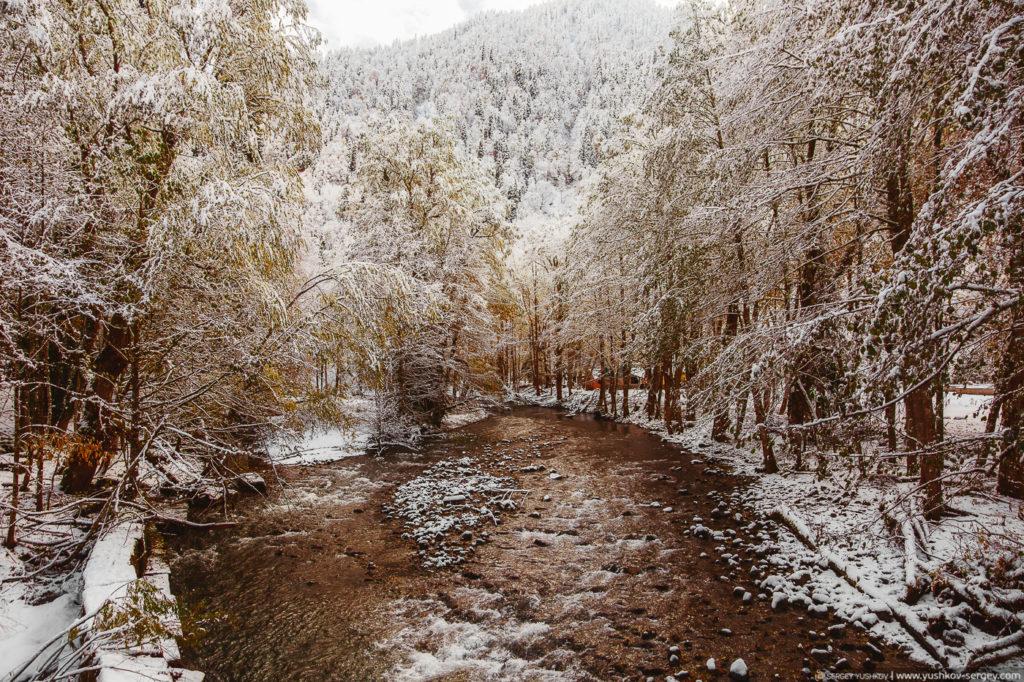 Река возле озера Рица. Осень. Абхазия