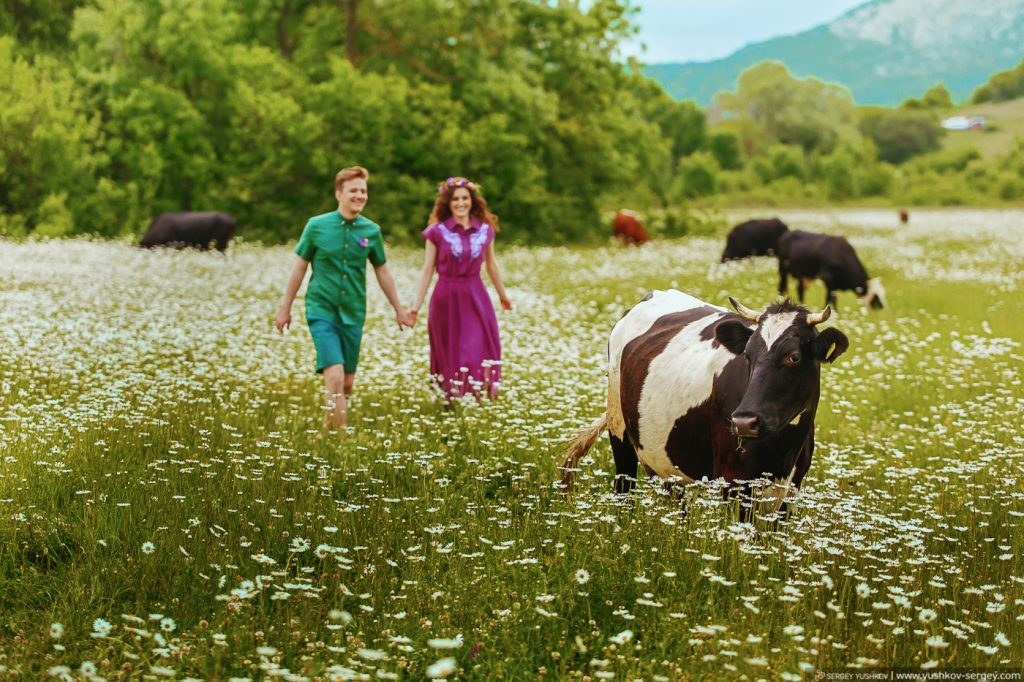 Романтическая фотосессия на ромашковом поле Для двоих в Крыму. Фотограф - Сергей Юшков