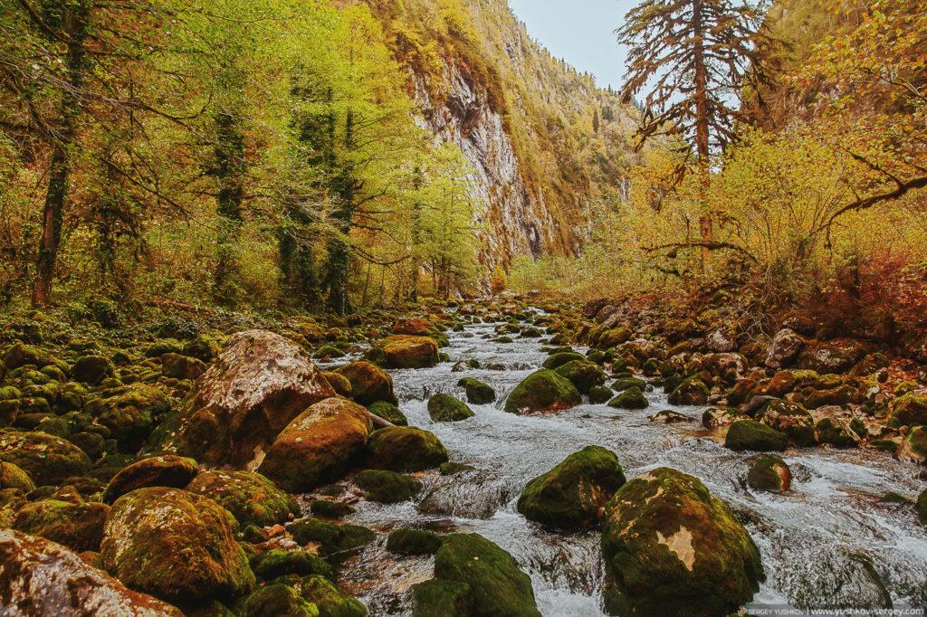 Река в Юпшарском каньоне. Осень. Абхазия