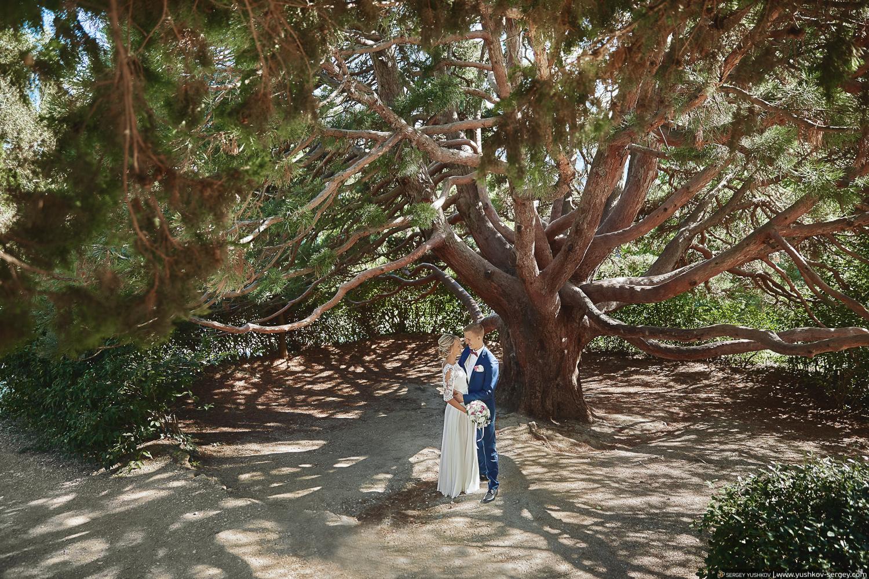 Свадьба для двоих в Крыму. Фотосессия в парке Воронцовского дворца в Алупке. Свадебный фотограф - Сергей Юшков.